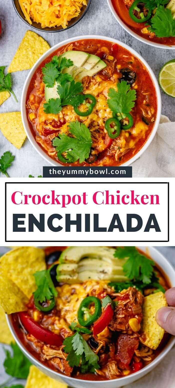chicken enchilada in a bowl